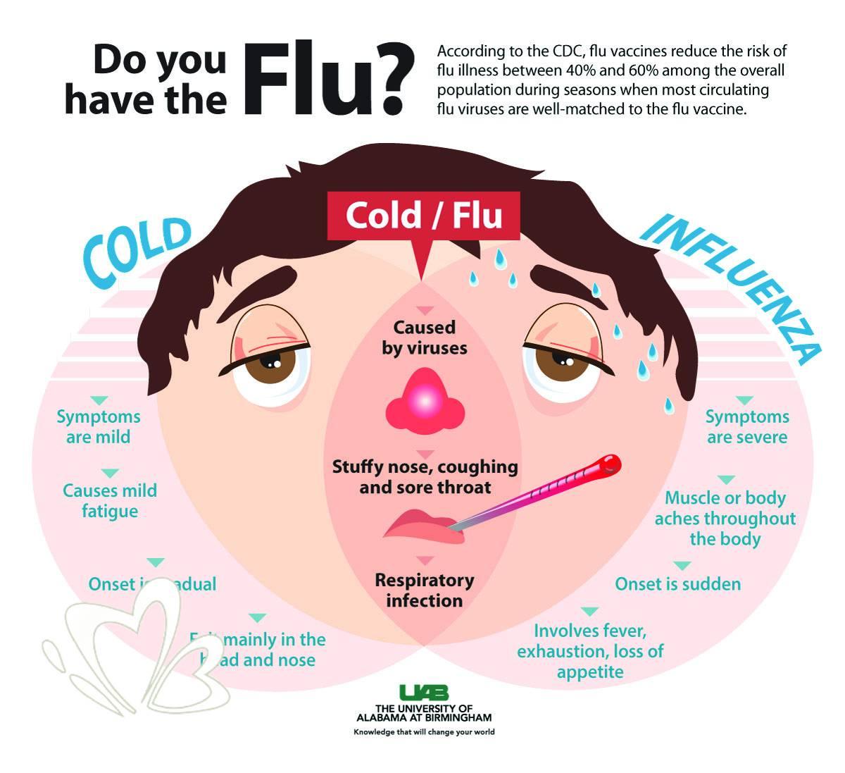 【精油+花茶】預防流感的天然強護盾!